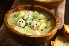 Minestra della zuppa della patata e del pollo Fotografia Stock