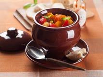Minestra di goulash Immagini Stock