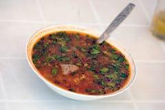 Minestra di kharcho della minestra Fotografie Stock Libere da Diritti