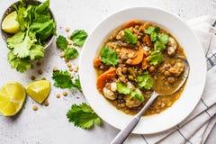 Minestra di lenticchia con le verdure in un piatto bianco, fondo bianco, vista superiore Alimento basato pianta, cibo pulito immagine stock libera da diritti