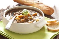 Minestra di lenticchia fresca con la patata Fotografia Stock