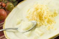 Minestra di patate cremosa casalinga con formaggio Immagini Stock Libere da Diritti