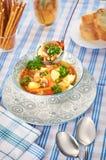Minestra di pollo con i funghi e le erbe in un'alta chiave immagine stock