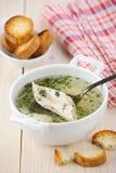 Minestra di pollo con le erbe ed i pani tostati Immagine Stock