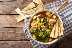 Minestra di recente cucinata della tortiglia con la fine-u delle verdure e del pollo fotografia stock
