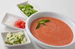 Minestra di rinfresco di zuppa di verdure fredda Fotografie Stock Libere da Diritti