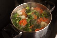Minestra di verdura Immagini Stock