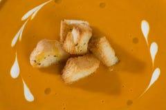 Minestra di verdura con crema ed i crostini Immagini Stock