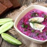 Minestra di verdura fredda con la barbabietola, il cetriolo e la panna acida Fotografia Stock