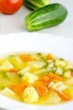 Minestra di verdura squisita Immagini Stock