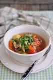 Minestra di verdura vegetariana Fotografia Stock