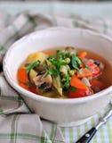 Minestra di verdura vegetariana Immagini Stock