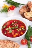 Minestra di verdure della rosso-barbabietola Fotografia Stock