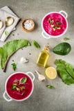 Minestra di zuppa di verdure fredda della barbabietola Immagine Stock