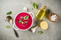 Minestra di zuppa di verdure fredda della barbabietola Immagine Stock Libera da Diritti