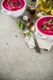 Minestra di zuppa di verdure fredda della barbabietola Fotografia Stock