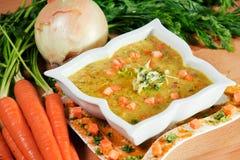 Minestra fresca della carota e del curry Immagine Stock
