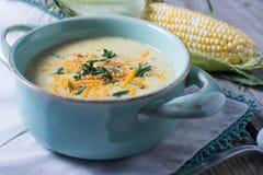 Minestra fresca della zuppa di cereale di caduta Fotografia Stock