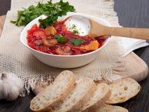 Minestra rossa delle barbabietole con aglio e pane Fotografia Stock Libera da Diritti