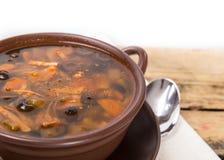 Minestra russa tradizionale della carne con i cetrioli salati Fotografia Stock Libera da Diritti
