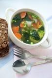 Minestra sana con pane integrale Immagini Stock Libere da Diritti