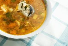 Minestra sana dei pesci Fotografie Stock