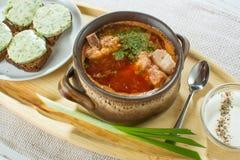 Minestra ucraina e russa tradizionale del pasto - borscht nel authe Fotografie Stock Libere da Diritti