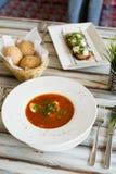 Minestra ucraina o russa del borscht fotografie stock libere da diritti