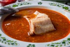 Minestra ungherese del pesce con paprica Immagini Stock