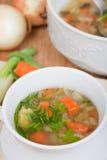 Minestra vegetariana con la carota, spezia, patata, cipolla Immagini Stock