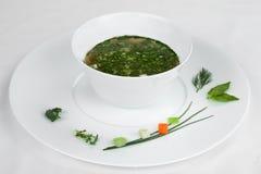 Minestra vegetariana verde in un piatto bianco fotografia stock libera da diritti
