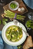 Minestrone - italiensk grönsaksoppa med sparris royaltyfria bilder