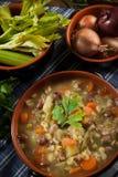 Minestrone - soep met groenten Royalty-vrije Stock Fotografie