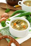 Minestrone soup with green beans, carrots and pota Royalty Free Stock Image