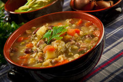 Minestrone - soup with vegetables Stock Images