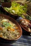 Minestrone - Suppe mit Gemüse Lizenzfreies Stockbild