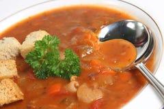 minestrone zupę. Zdjęcia Stock