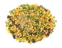 Minestrone zupnej mieszanki porcja na białym tle Zdjęcie Stock