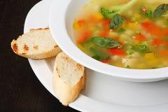 minestronesoupgrönsak Arkivfoto