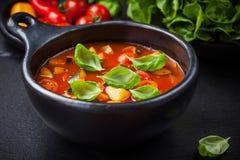 Minestronesuppe mit Gemüse lizenzfreie stockfotografie