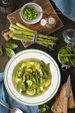 Minetsrone soppa med potatisar, zucchinin och sparris royaltyfria foton