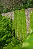 Ming Dynasty City Wall in de lente Stock Foto