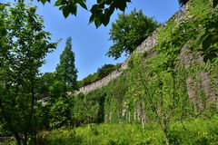 Ming Dynasty City Wall in the spring Royalty Free Stock Photo
