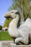 Ming Tombs: sitting camel. Stock Photo