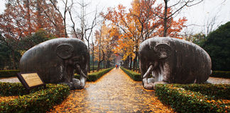 Ming Xiaoling Mausoleum av Nanjing Royaltyfri Fotografi