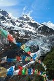 Ming yong glaciär med buddistiska bönflaggor Arkivbild
