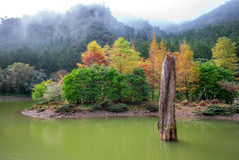 Mingchi-Erholung im Walds-Bereich lizenzfreie stockfotos