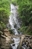 Mingo Falls and Creek in the Spring royalty free stock photos