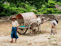Mingun出租汽车,曼德勒,缅甸 图库摄影