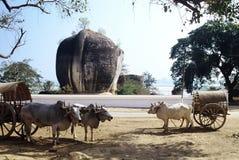 Mingun,Myanmar. Huge Elephant statue at Mingun near Mandalay ,Myanmar Stock Images